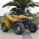 Hot selling 36V/500W 4 wheel eec electric atv 4x4 with CE certificate