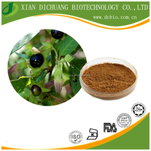high quality Belladonnae Extract Powder/Beladonna Herb.P.E/ Hyoscyamine