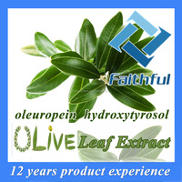 Water soluble olive leaf extract powder with oleuropein & hydroxytyrosol Made in China