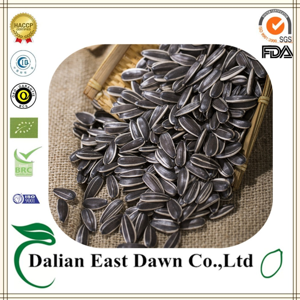 Wholesale Black Oil Sunflower Seeds Exporter Importer