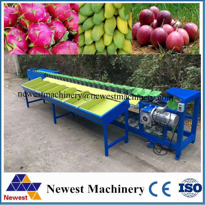 Good price fruit weight sorting production line/kiwi weight grading machine