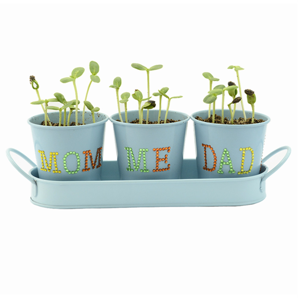Diy Novelty Planters Indoor Garden Windowsill Growing Kit With ... on traditional garden planters, natural garden planters, unique recycled garden planters, decorative garden planters, contemporary garden planters, textured garden planters, chair planters, outdoor garden planters,