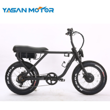 750W 13Ah 48V Mountain Electric Fat Bike SUPER 75 For Adults