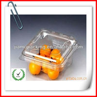 global wholesale disposable dried fruit trays