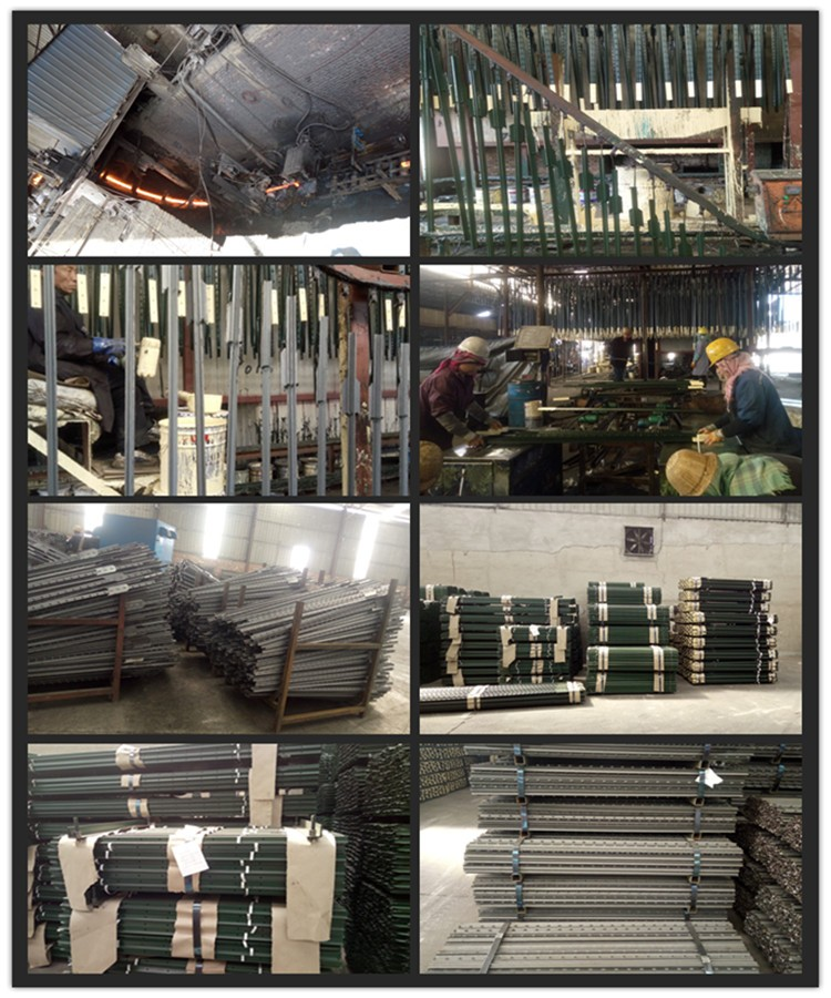 Field fence post steel star picket y posts with standard