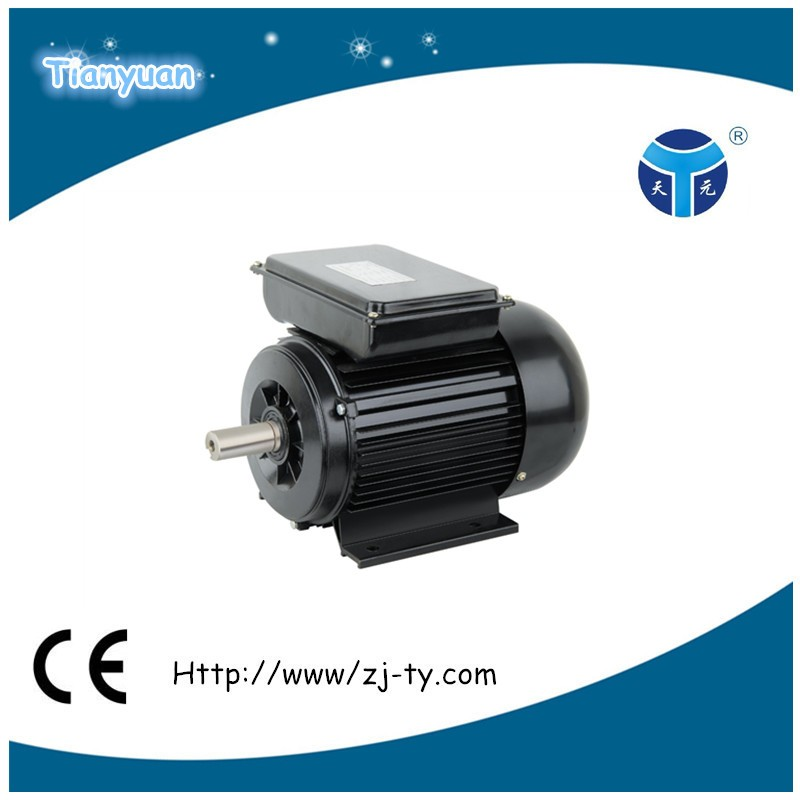 Yl8014 Ac Electric Motor Low Speed High Torque Motor Buy