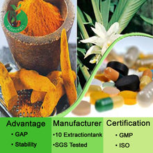 High Quality Pure 95% Curcumin Wholesale Turmeric Root Extract Powder