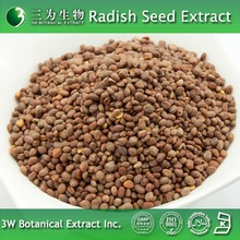 100% Natural Raphanus sativus L. Extract Made in China