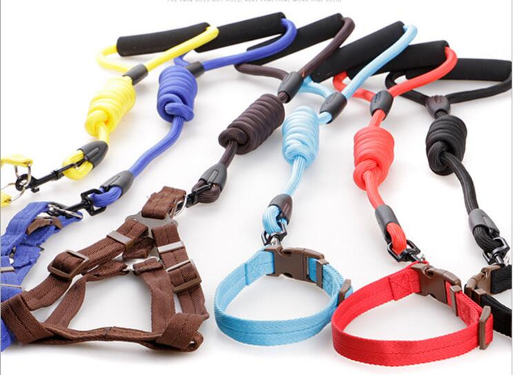 Colorful nylon braided dog collars and leashes