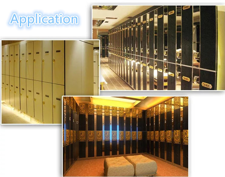 dragon design rf card canbinet sauna lock rfid locker lock