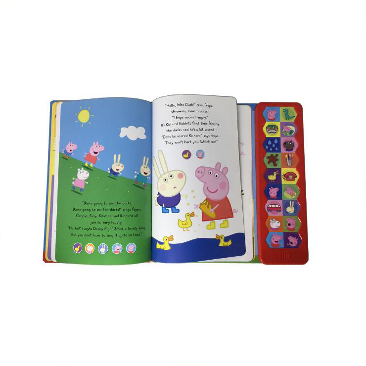 Custom programmable talking electronic voice recordable book