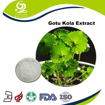 Large-scale plant base Gotu Kola P.E.