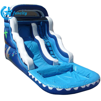 Giant Blue Crush Inflatable Water Slide , Outdoor Inflatable Water Slide For Sale