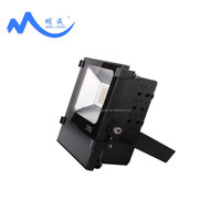 Explosion-proof 100W led canopy light for gas station with Meanwell driver