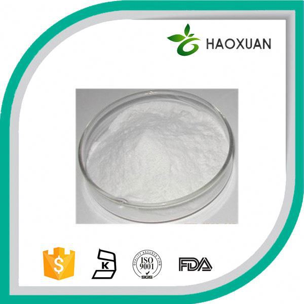 Herbal Extract Angelica Sinensis Extract Angelica Root Powder
