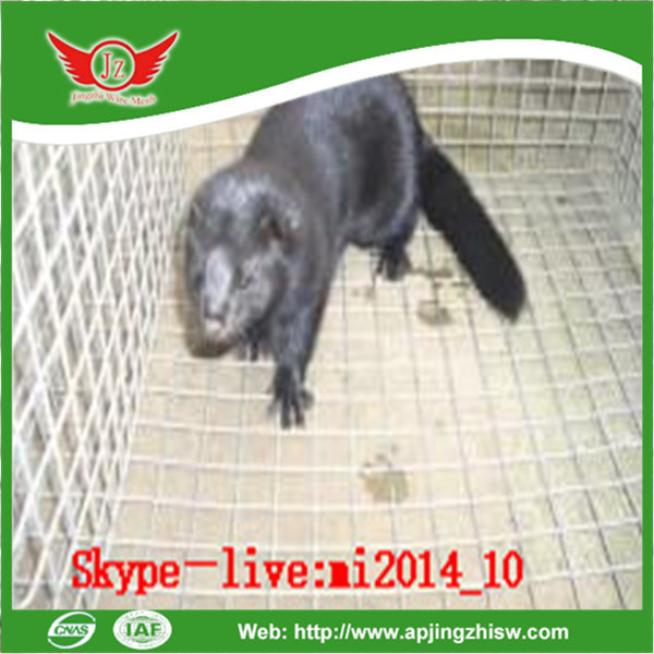 welded wire mesh dog cage/pig cage for sale