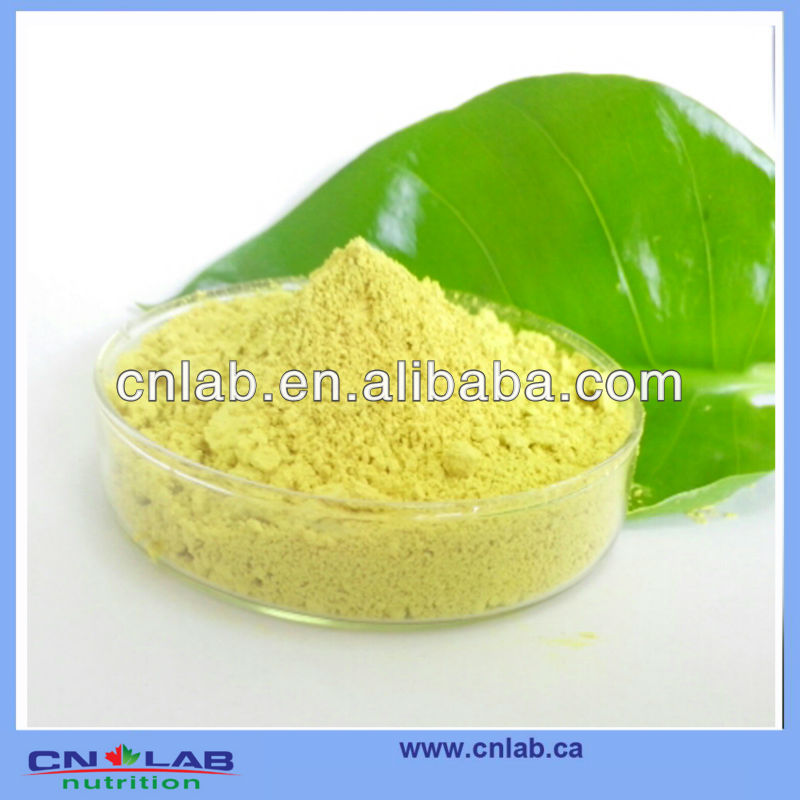 100% Natural Onion Extract Powder with Quercetin 98% (GMP.HACCP)