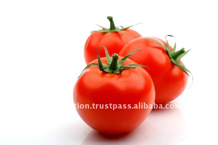 Lycopene Extract Softgel
