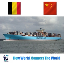 Hot!!!Best ocean freight shipping to Belgium from China forwarder shipping agent