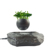 Vietnam bonsai shelf plastic bonsai pots fly in the air