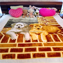 Alibaba China best price polar fleece two baby dogs blanket