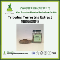 GMP Factory Supply Tribulus terrestris extract saponins 40% 70% 90%