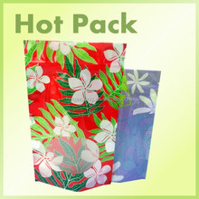 plastic food packaging bag/stand up transparent Nylon bag