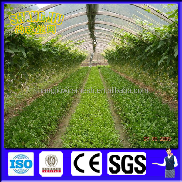 Anping Shangjiu company wholesale HDPE 100% new vegetable plant anti insect net/30mesh-40mesh/transparent insect net/ 50-100g/m2