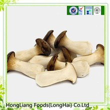Hot sale fresh king oyster mushroom