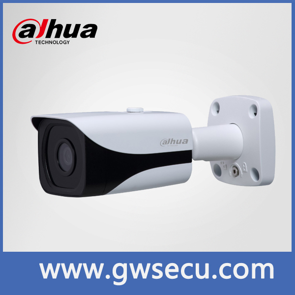 dahua smart Face detection 3 megapixel ip camera viewerframe mode network ip camera maginon ip camera
