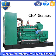 Backup 130KW Gas CHP Generator Set Diesel Generator Set Gas Generators