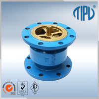 vertical lift check valve for sea water