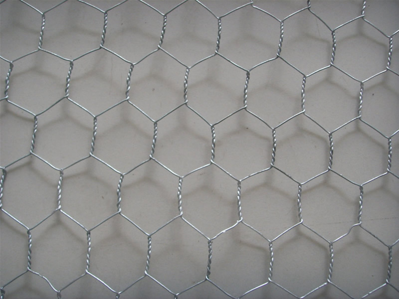 electro galvanized wire hexagonal wire netting for chicken fence and poultry cage