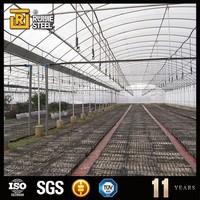 greenhouse plastic film greenhouse single span baolida tunnel greenhouse for sale