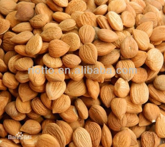 Nature Bitter Apricot Seed Extract nautre 98% 99% Amygdalin