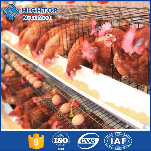 4 tier chicken layer battery cage for tanzanla poultry farm