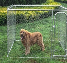 Heavy duty galvanized metal 10x10 dog kennels / cheap chain link 10x10 kennels dog fence