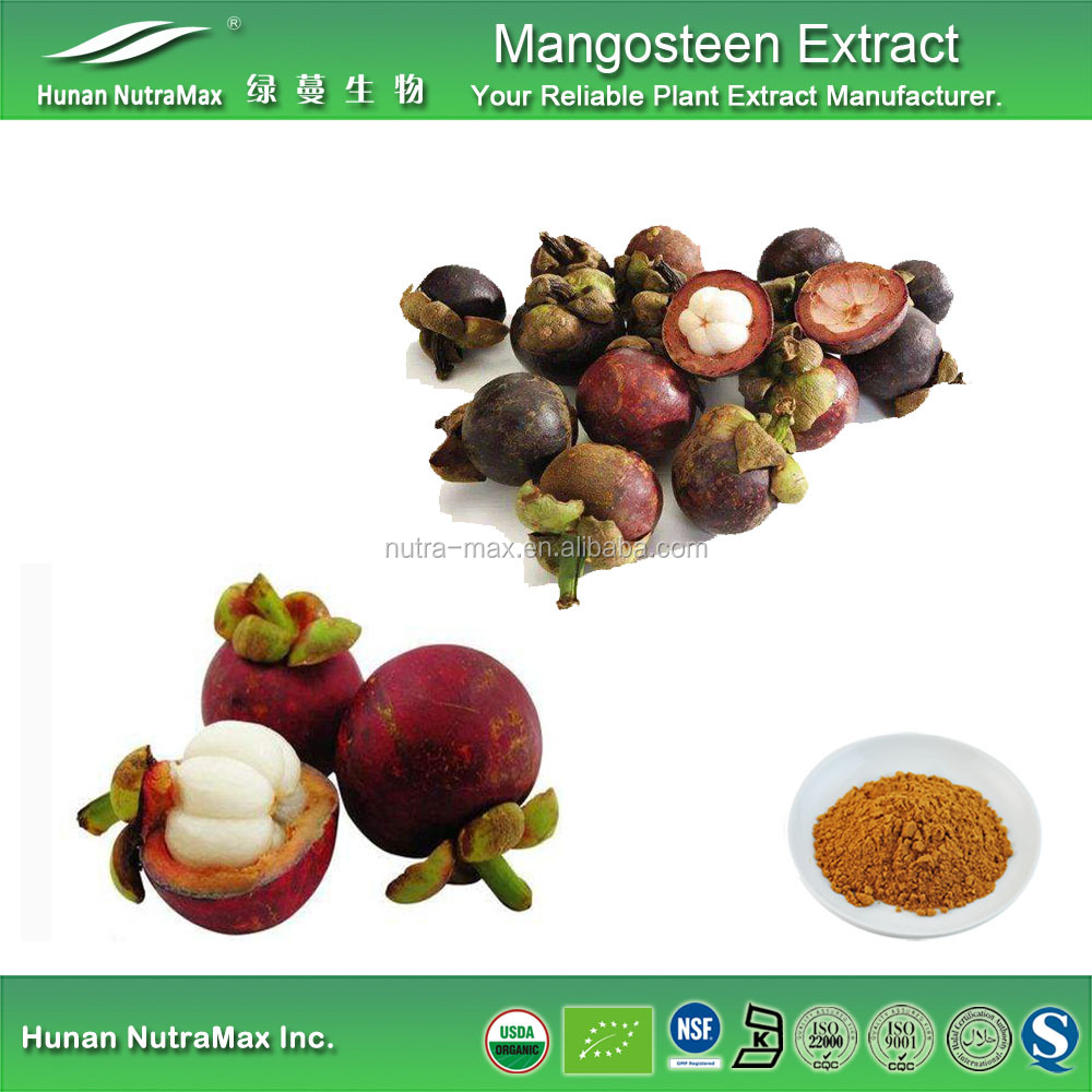 Top quality Mangosteen Rind Extract Powder,Mangosteen Rind Extract,Mangosteen Rind Powder