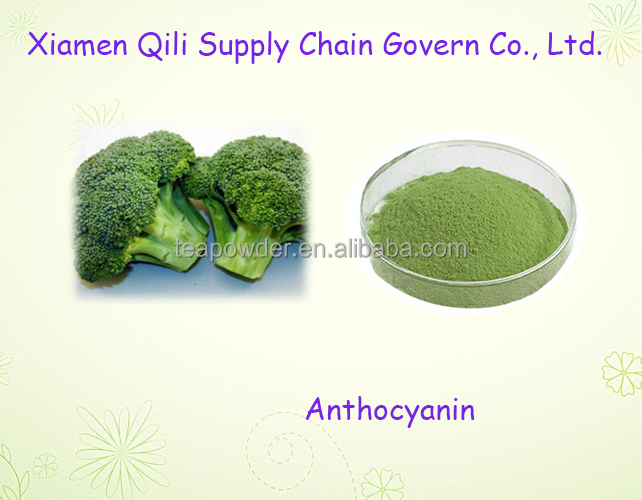 High Quality Hot sale broccoli extract Anthocyanin powder
