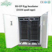 Advanced technology from abroad ,occupy the market with mature incubation Technology egg incubator HJ-I19