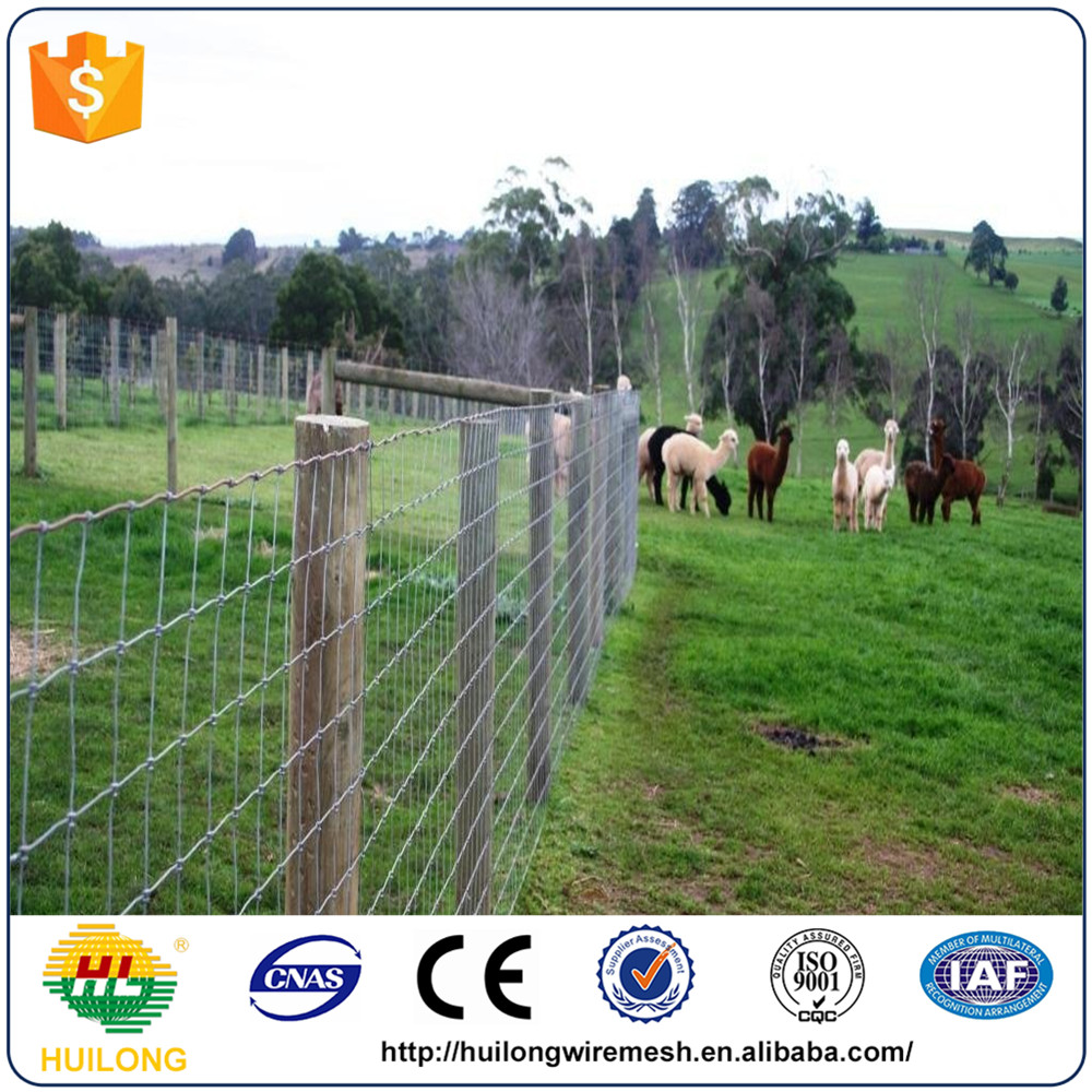 Boswana Market 1.2m/1.5m Height Sheep And Goat Fence For Farm