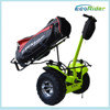 Two wheel adult self balancing electric motorcycles from Xinli Escooter