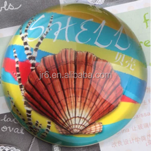wholesale round jellyfish glass photo paperweight