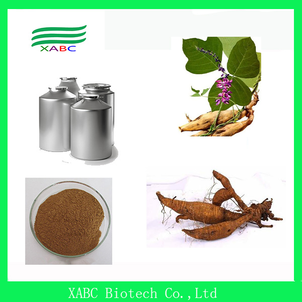 Natural Kudzu root extract/ kudzu extract powder/ Puerarin