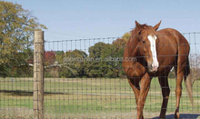 horse fencing/horse fence panels/fencing for horses