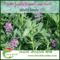Touchhealthy supply hot sale alfalfa seeds for animals