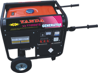 Exhibition Sample Portable Gasoline Generator rato 8KW