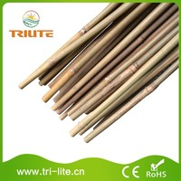 Sell Well New Type Hydroponic bamboo raw materials