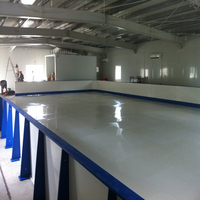 UHMWPE Ice Sheet/HDPE Synthetic Ice Rink Manufacturer/UHMWPE Sheets for Ice Skating Arena Customs Data