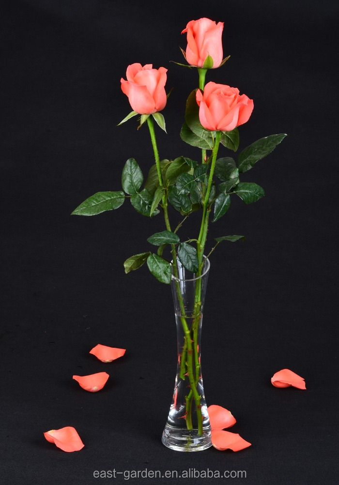 Export Fresh Cut Rose Flower Best Selling Fresh Rose Banquets For Wedding Decoration
